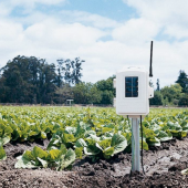 DAVIS WIRELESS LEAF AND SOIL MOIST/TEMP STATION 6345CSAU